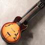 Gibson/ES-125 TC 1967