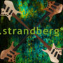 【strandberg】Boden Bass Series