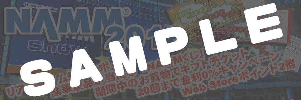 MUSIC PARK2015